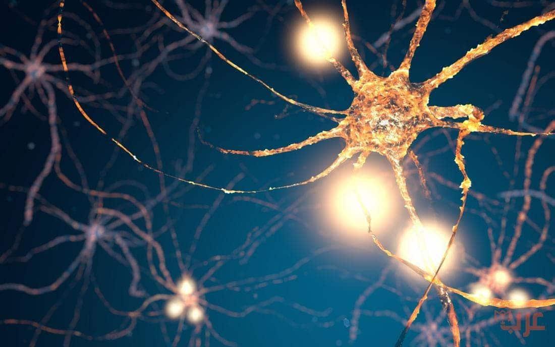 علاج خلايا المخ الميتة