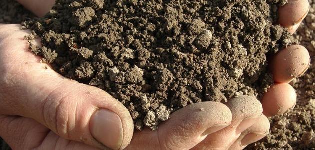 الطين في المنام